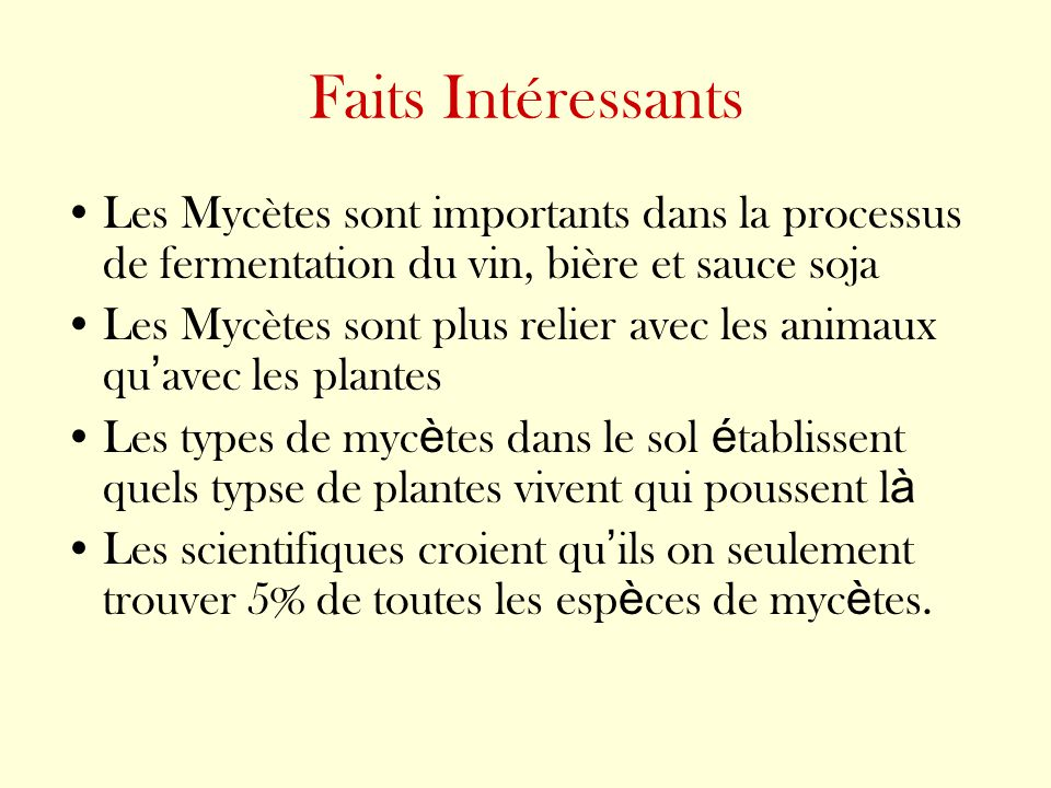 Faits Intéressants Les Mycètes sont importants dans la processus de fermentation du vin, bière et sauce soja Les Mycètes sont plus relier avec les ani