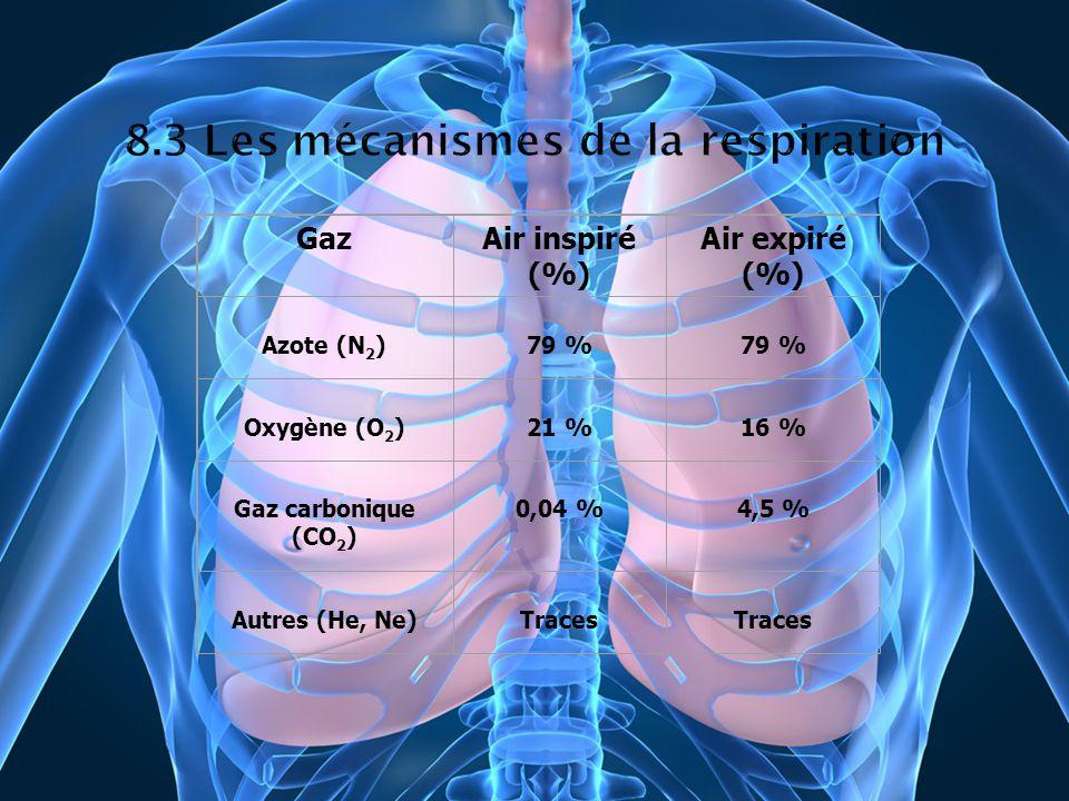 GazAir inspiré (%) Air expiré (%) Azote (N 2 )79 % Oxygène (O 2 )21 %16 % Gaz carbonique (CO 2 ) 0,04 %4,5 % Autres (He, Ne)Traces