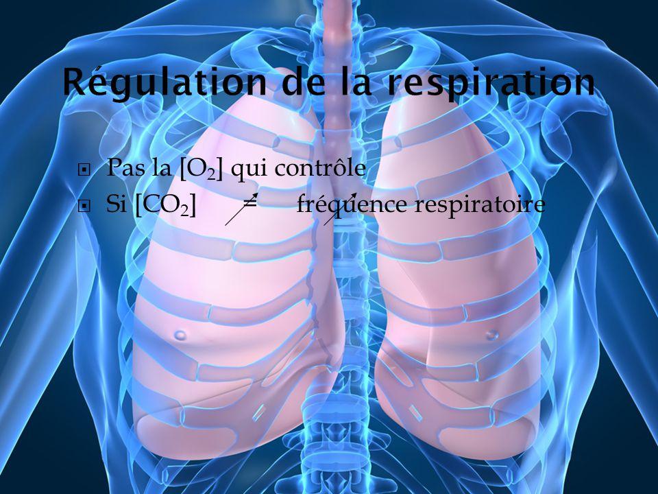 Pas la [O 2 ] qui contrôle Si [CO 2 ] = fréquence respiratoire
