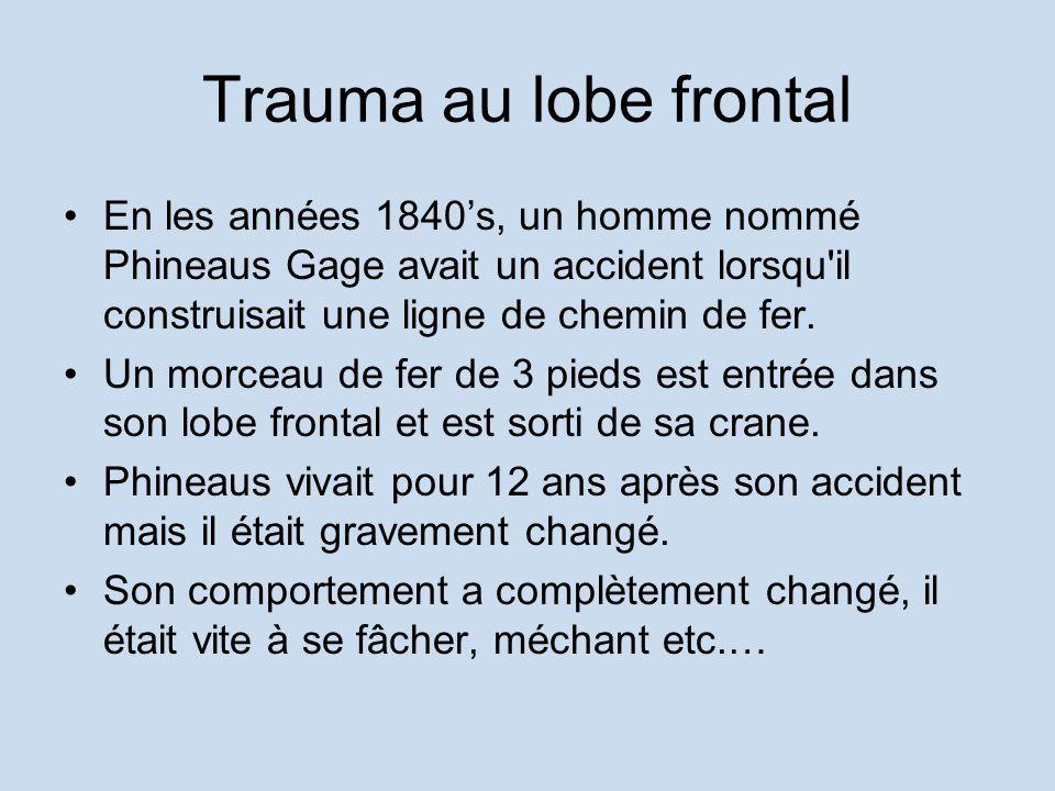 Trauma au lobe frontal En les années 1840s, un homme nommé Phineaus Gage avait un accident lorsqu'il construisait une ligne de chemin de fer. Un morce