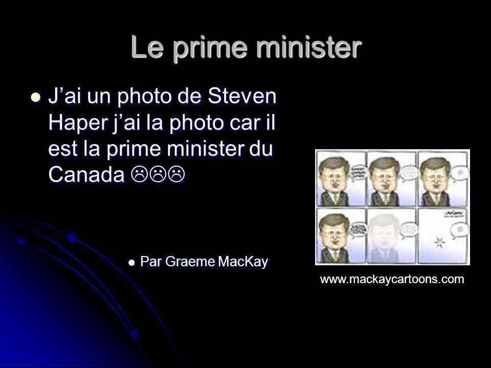 Le prime minister Jai un photo de Steven Haper jai la photo car il est la prime minister du Canada Jai un photo de Steven Haper jai la photo car il est la prime minister du Canada Par Graeme MacKay Par Graeme MacKay www.mackaycartoons.com
