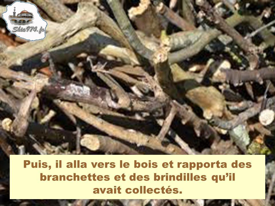 Puis, il alla vers le bois et rapporta des branchettes et des brindilles quil avait collectés.