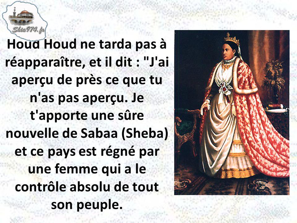 Houd Houd ne tarda pas à réapparaître, et il dit :