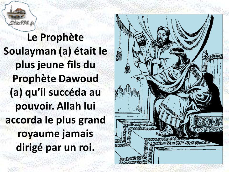 Le Prophète Soulayman (a) était le plus jeune fils du Prophète Dawoud (a) quil succéda au pouvoir. Allah lui accorda le plus grand royaume jamais diri