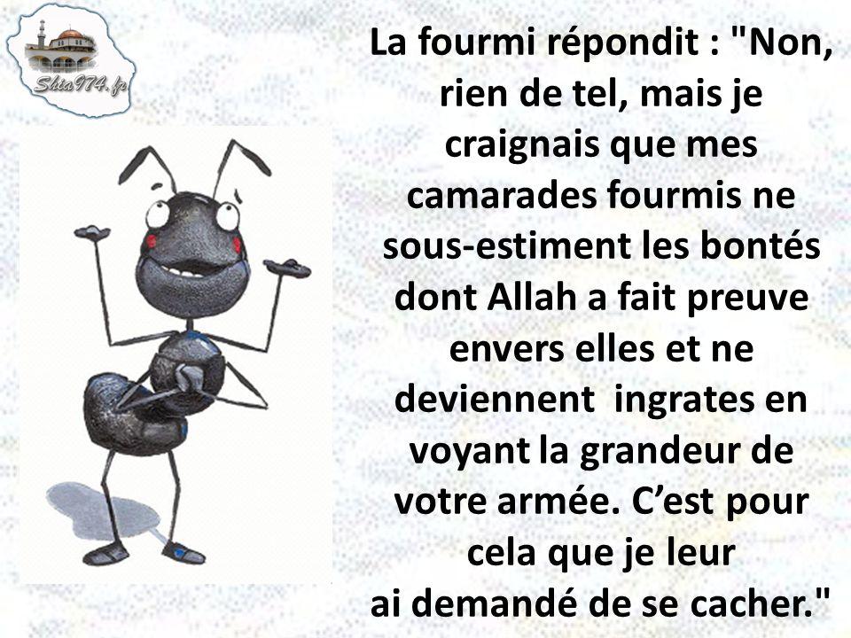 La fourmi répondit :