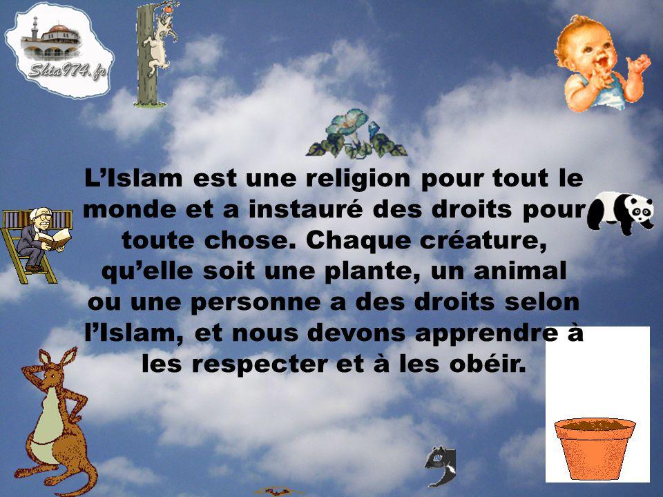 LIslam est une religion pour tout le monde et a instauré des droits pour toute chose. Chaque créature, quelle soit une plante, un animal ou une person