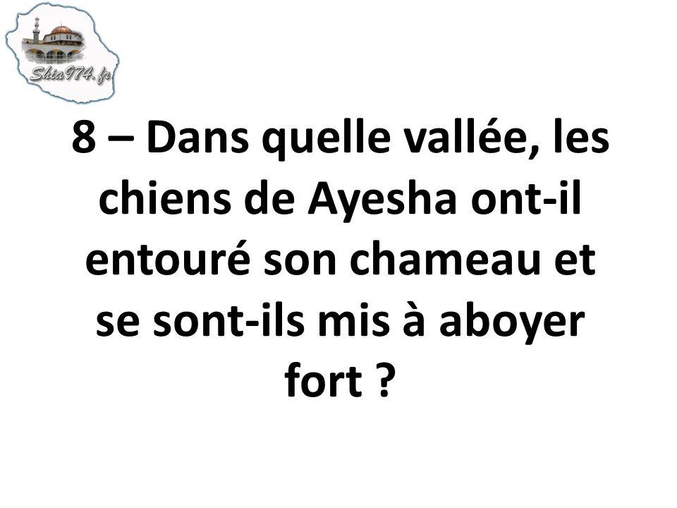 8 – Dans quelle vallée, les chiens de Ayesha ont-il entouré son chameau et se sont-ils mis à aboyer fort ?