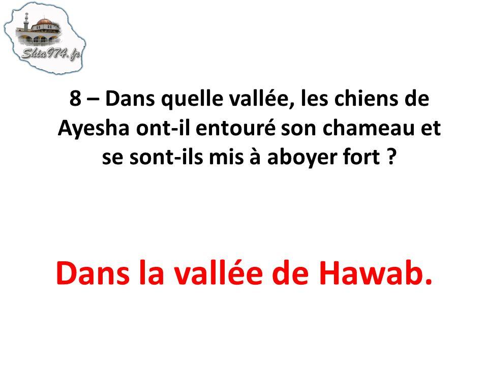 Dans la vallée de Hawab.