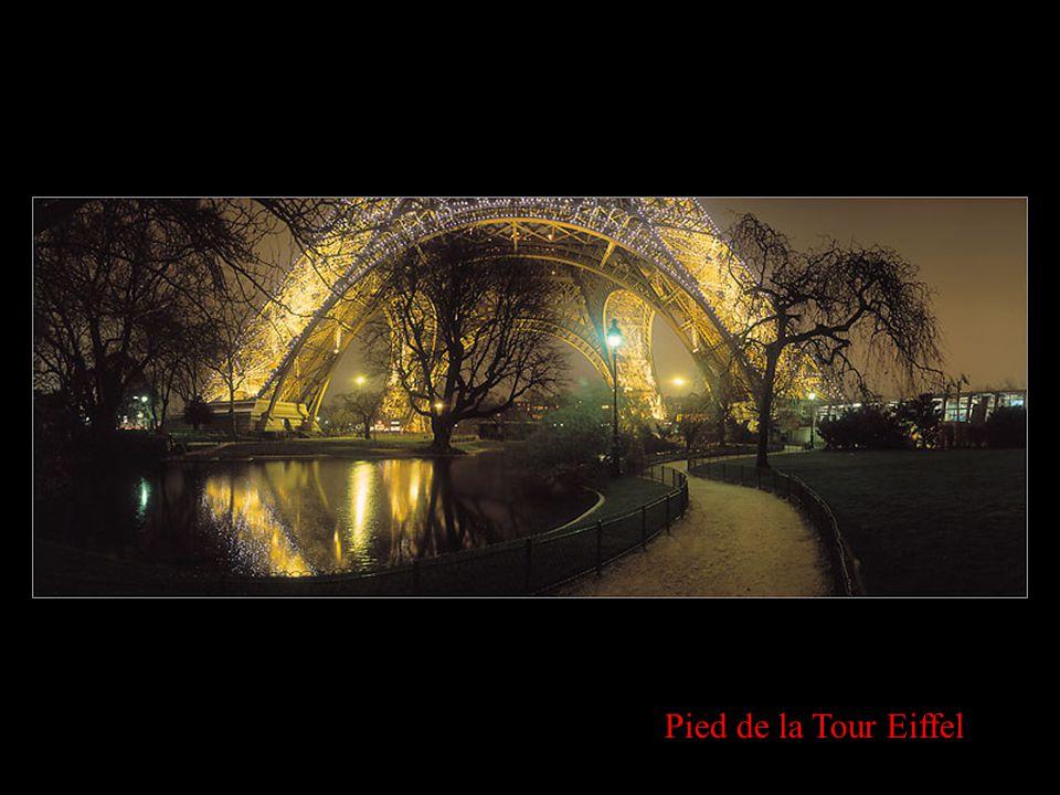Vue panoramique de Paris et La Défense ENVOIE CECI A CEUX QUE TU AIMES