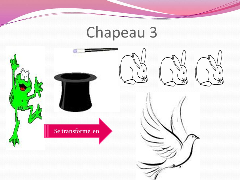 1 lapin 1 colombe 1 grenouille 1 lapin On a trouve que…