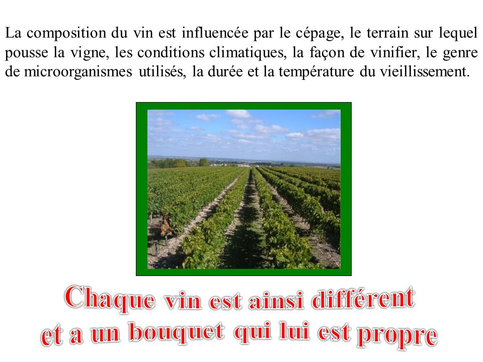 La composition du vin est influencée par le cépage, le terrain sur lequel pousse la vigne, les conditions climatiques, la façon de vinifier, le genre