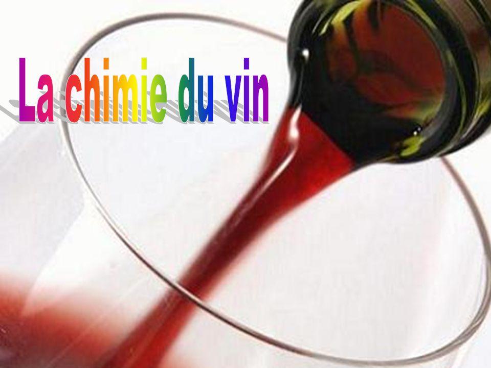 Le vin est une boisson alcoolisée obtenue par la fermentation du raisin, fruit des vignes.