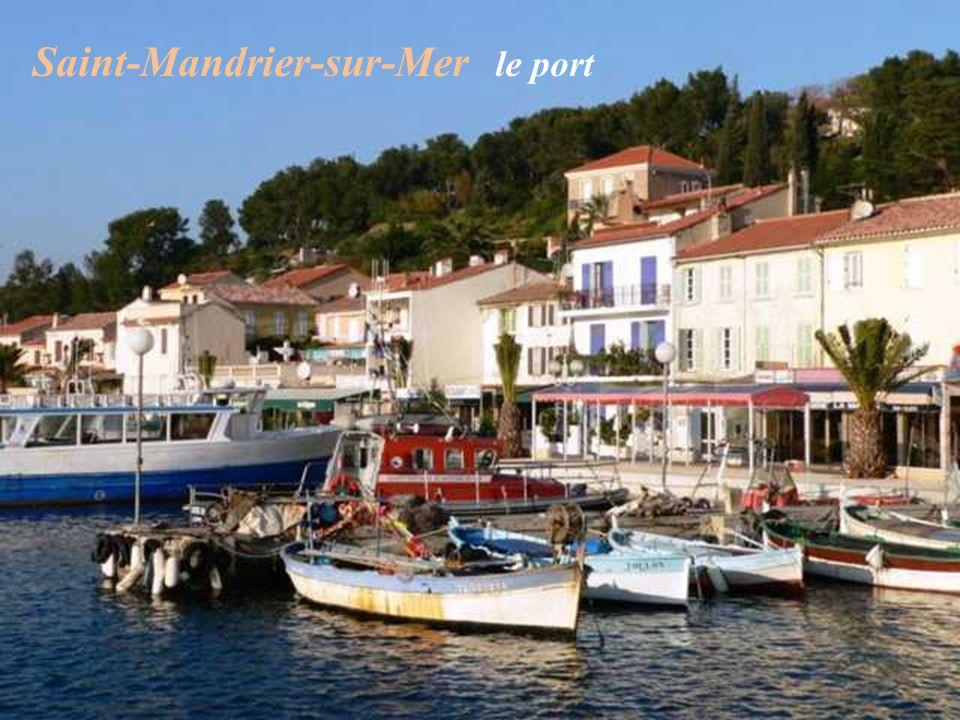 Saint-Mandrier-sur-Mer le port