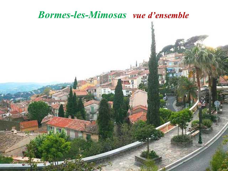 Bormes-les-Mimosas vue densemble
