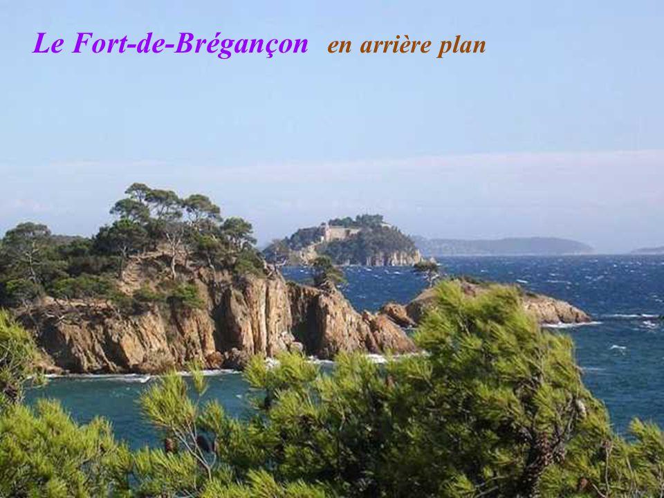 Le Fort-de-Brégançon en arrière plan