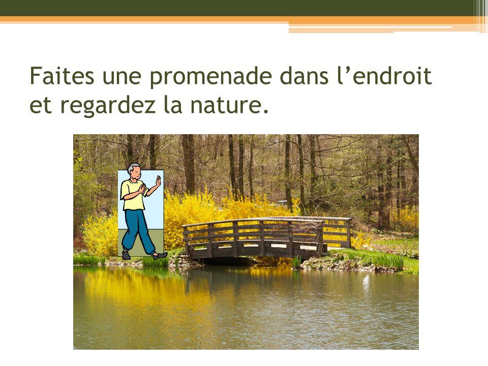 Faites une promenade dans lendroit et regardez la nature.