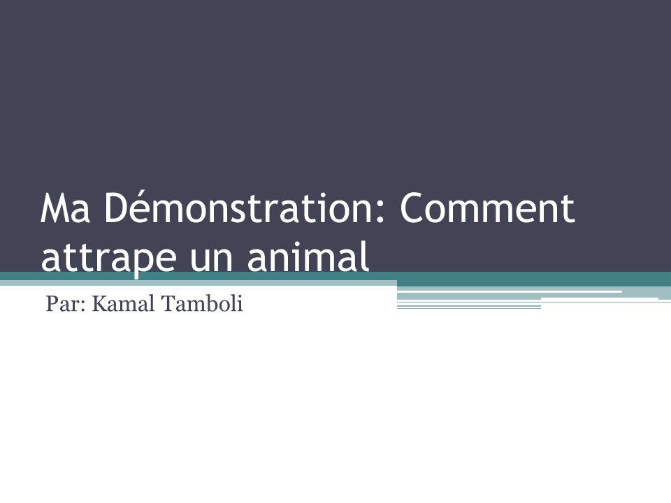 Ma Démonstration: Comment attrape un animal Par: Kamal Tamboli