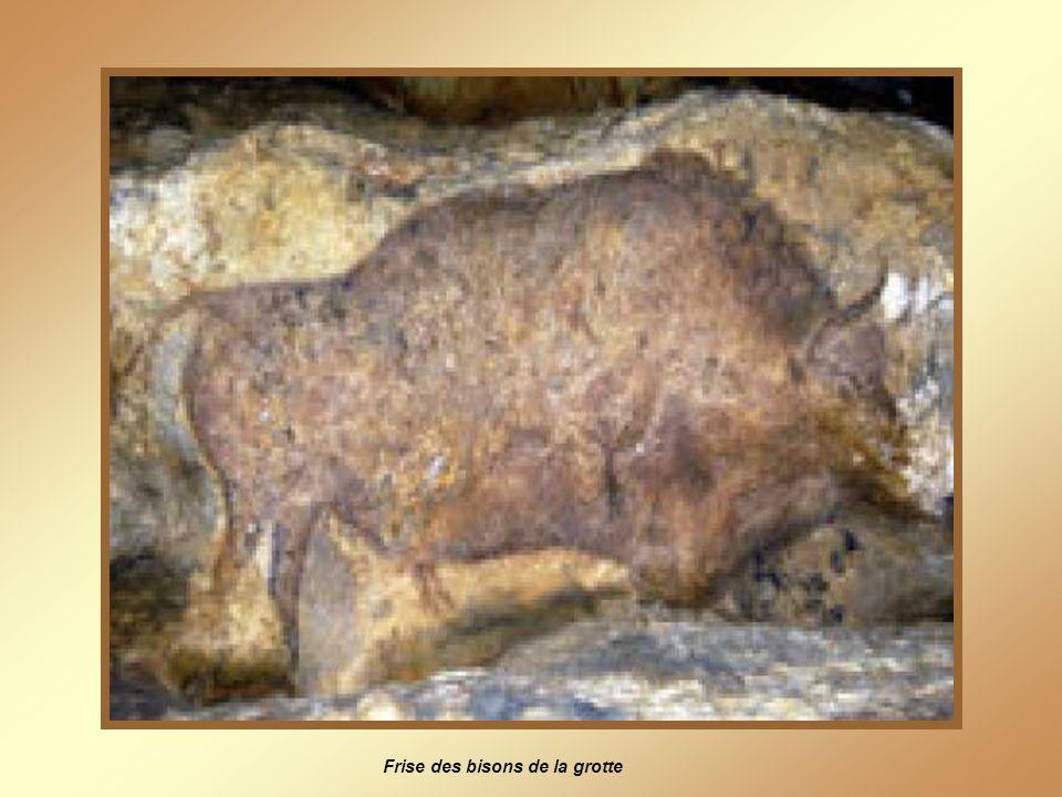 Vue de la falaise de Font-de-Gaume, (l'entrée de la grotte se trouve à mi-hauteur)