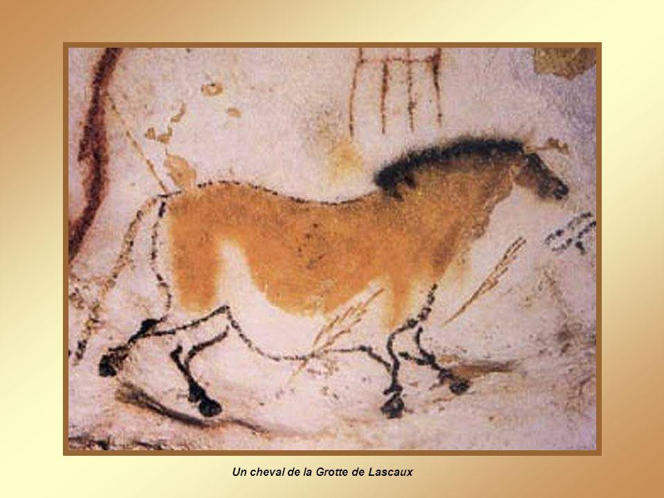 Grotte de Lascaux À tout seigneur, tout honneur