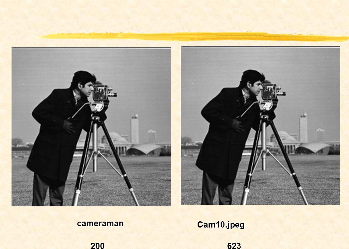 Cam50.jpg 625625 Cam99.jpg