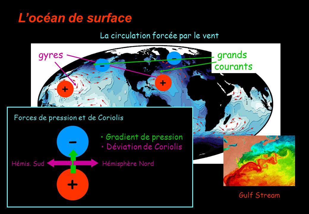 Locéan de surface gyres La circulation forcée par le vent Forces de pression et de Coriolis - + + - + - Gradient de pression Déviation de Coriolis Hémisphère NordHémis.