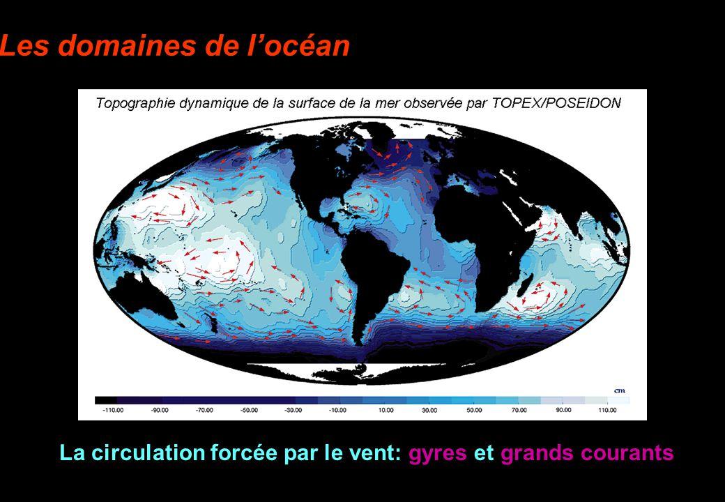 Les domaines de locéan La circulation forcée par le vent: gyres et grands courants