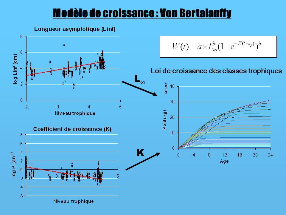 Modèle de croissance : Von Bertalanffy L K Loi de croissance des classes trophiques
