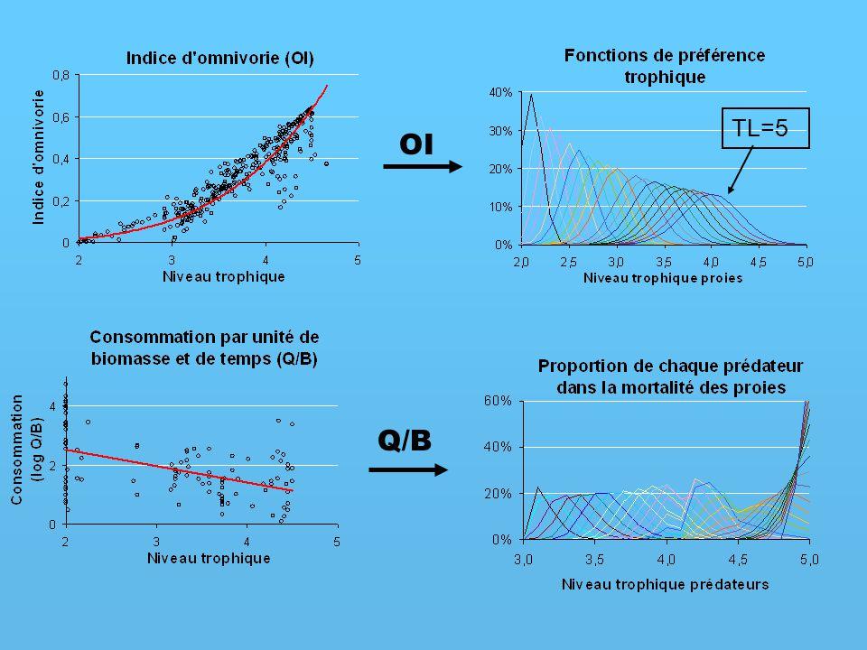 Q/B TL=5 OI
