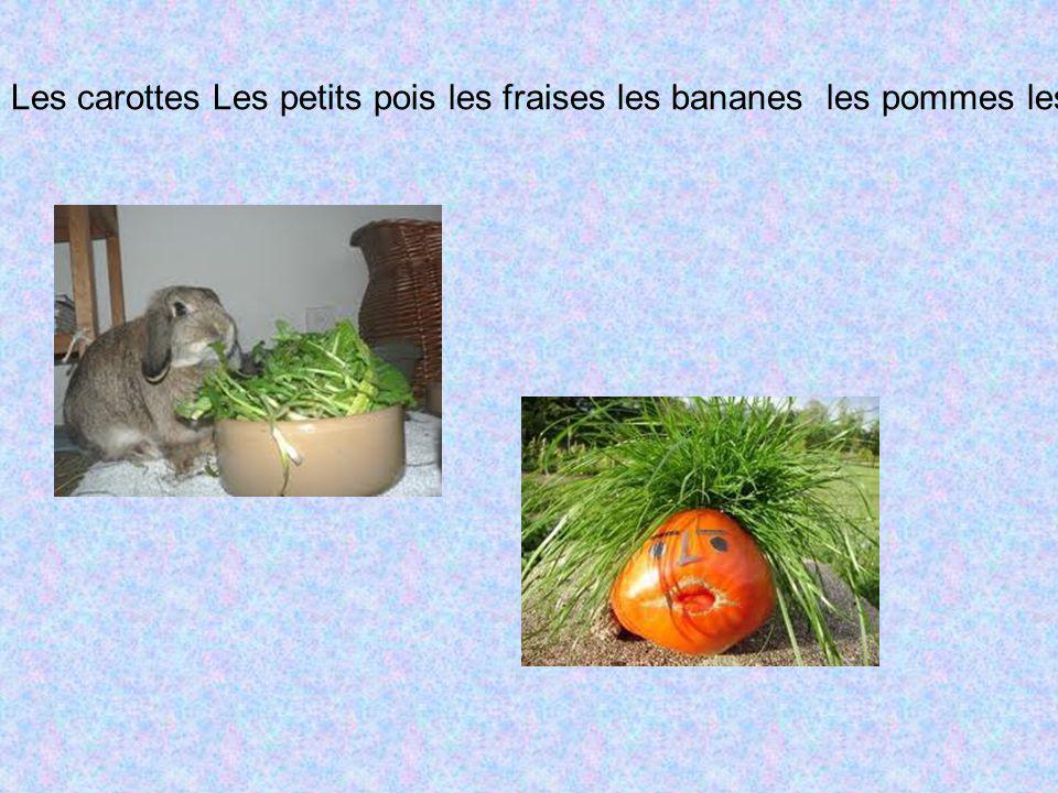 Les carottes Les petits pois les fraises les bananes les pommes les raisins les tomates les pommes de terre la salade