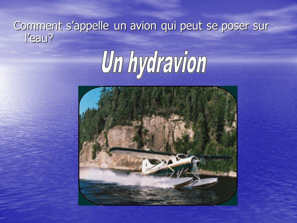 Comment sappelle un avion qui peut se poser sur leau?