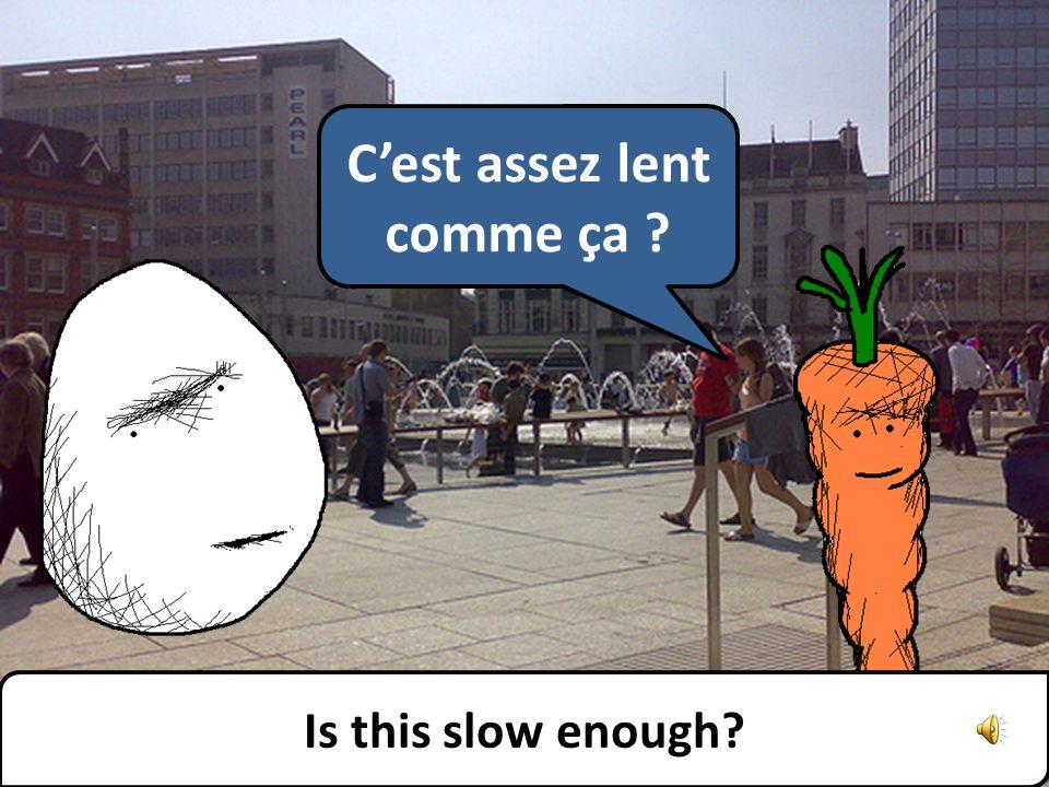 Pouvez-vous parler plus lentement, sil vous plaît Can you speak more slowly, please