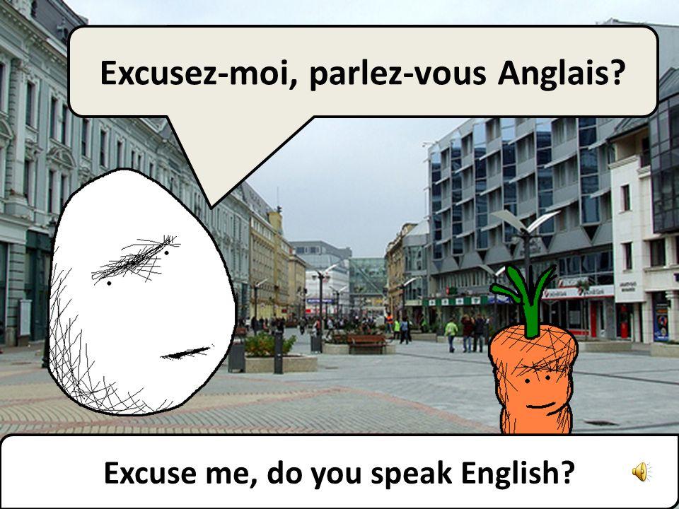 Excuse me, do you speak English? Excusez-moi, parlez-vous Anglais?