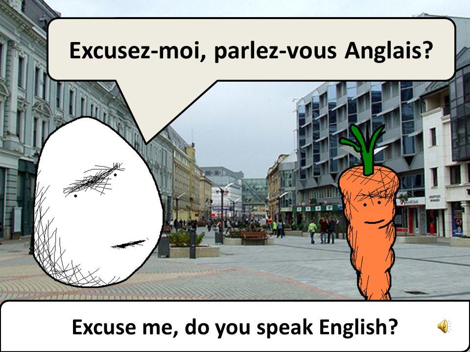 Pouvez-vous parler plus lentement, sil vous plaît ? Can you speak more slowly, please?