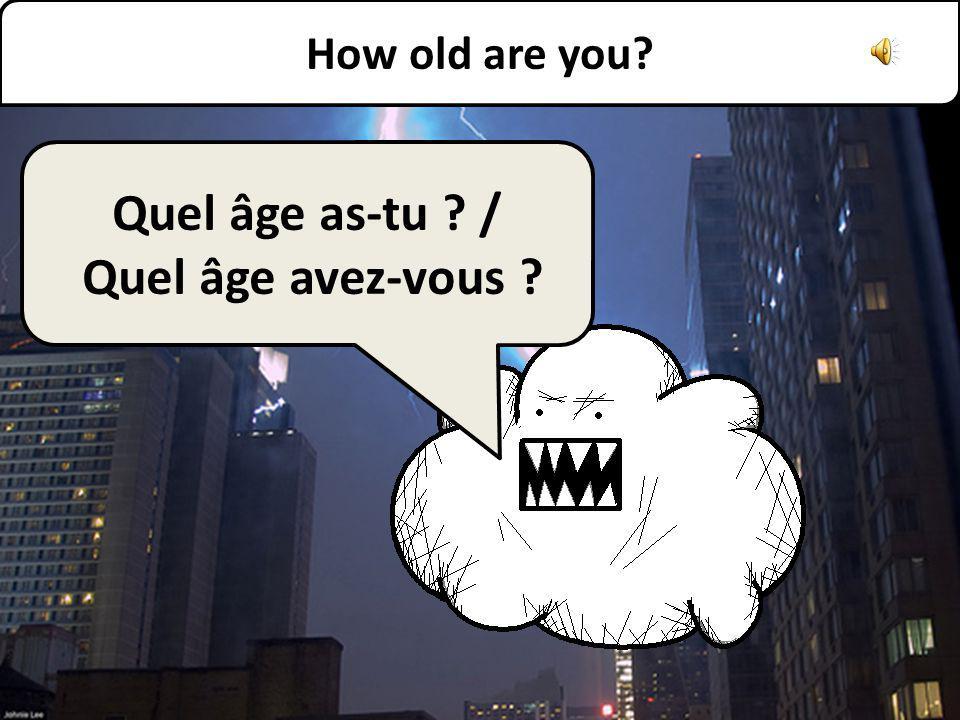 Jai vingt-trois ans. I am twenty three.