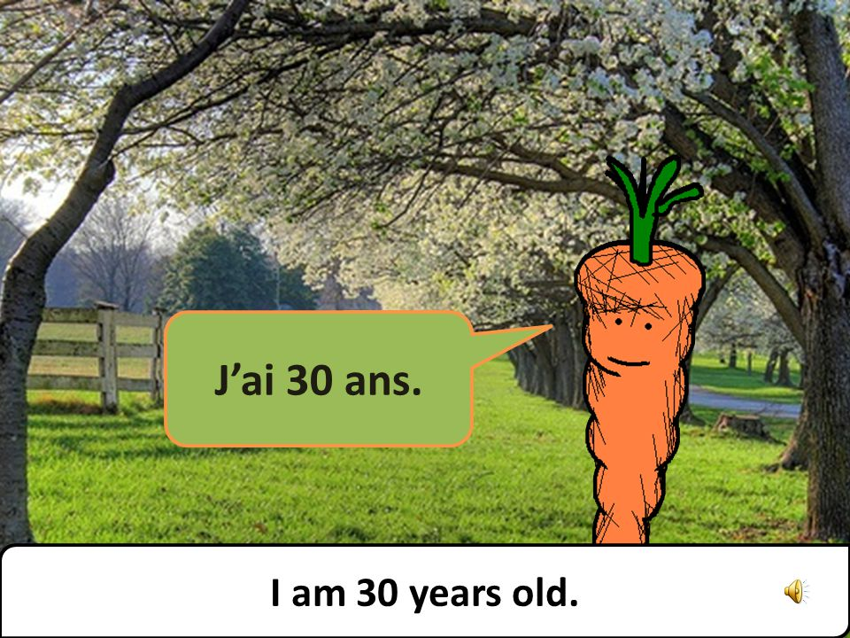 Jai 30 ans. I am 30 years old.