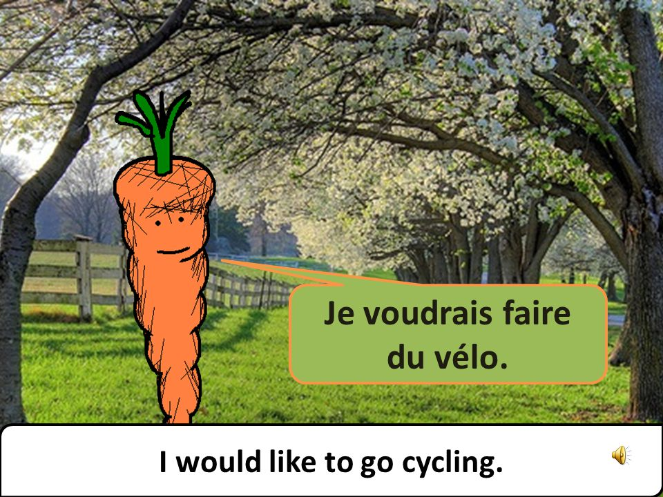 Je voudrais faire du vélo. I would like to go cycling.