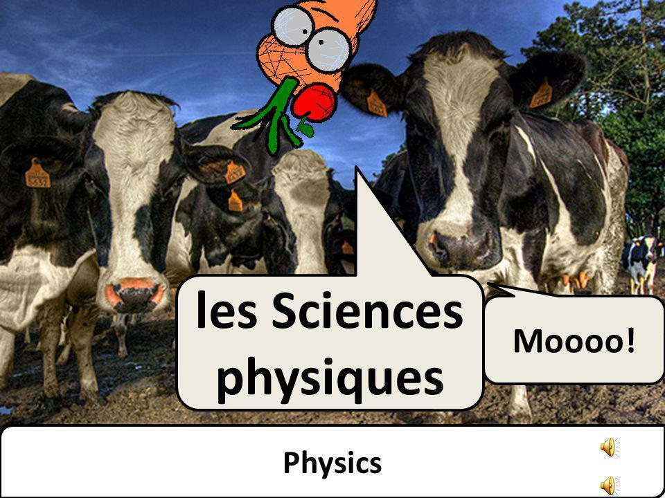 Physics les Sciences physiques Moooo!