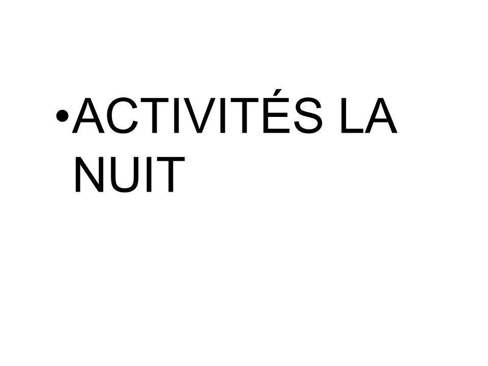ACTIVITÉS LA NUIT