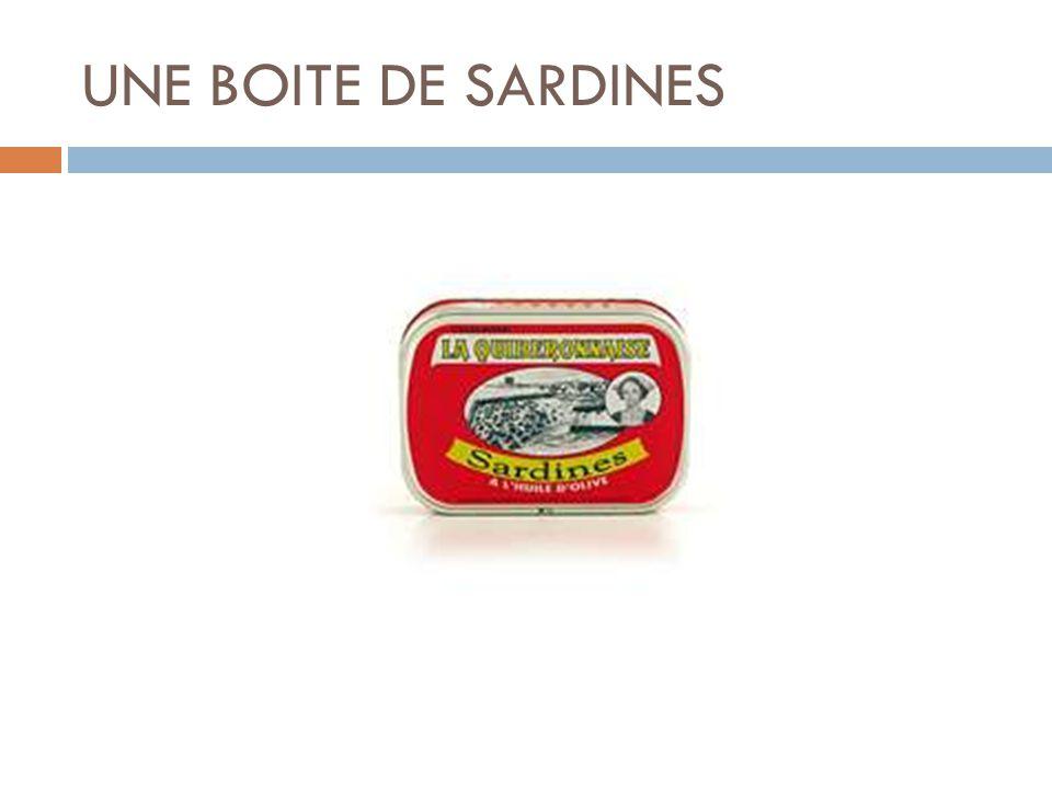 UNE BOITE DE SARDINES