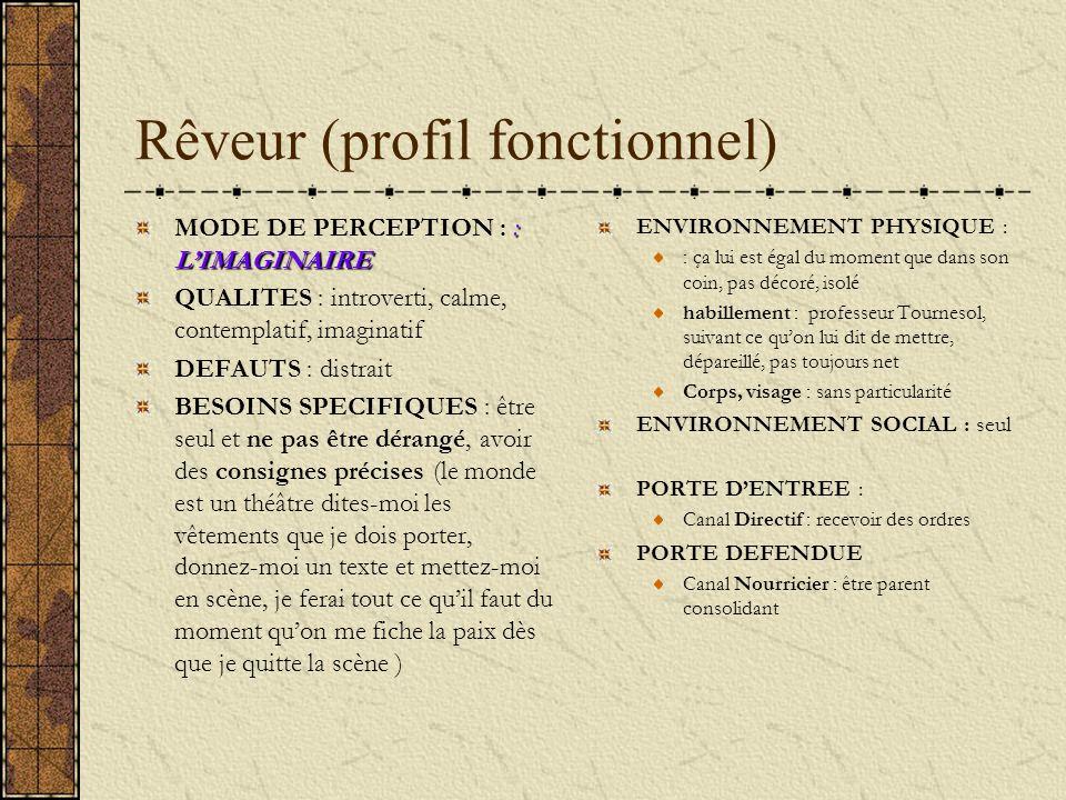 Rêveur (profil fonctionnel) : LIMAGINAIRE MODE DE PERCEPTION : : LIMAGINAIRE QUALITES : introverti, calme, contemplatif, imaginatif DEFAUTS : distrait