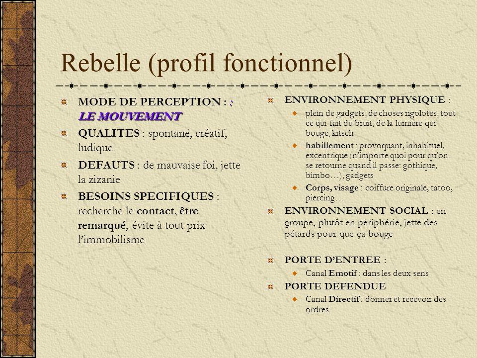 Rebelle (profil fonctionnel) : LE MOUVEMENT MODE DE PERCEPTION : : LE MOUVEMENT QUALITES : spontané, créatif, ludique DEFAUTS : de mauvaise foi, jette