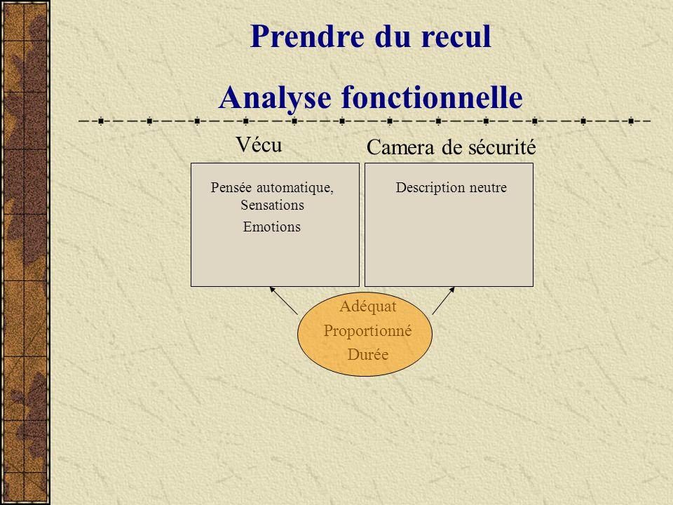 Prendre du recul Analyse fonctionnelle Adéquat Proportionné Durée Vécu Pensée automatique, Sensations Emotions Camera de sécurité Description neutre