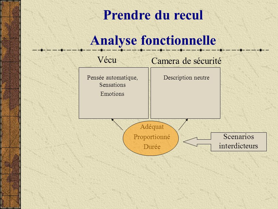 Prendre du recul Analyse fonctionnelle Adéquat Proportionné Durée Vécu Pensée automatique, Sensations Emotions Camera de sécurité Description neutre Passé Scenarios interdicteurs