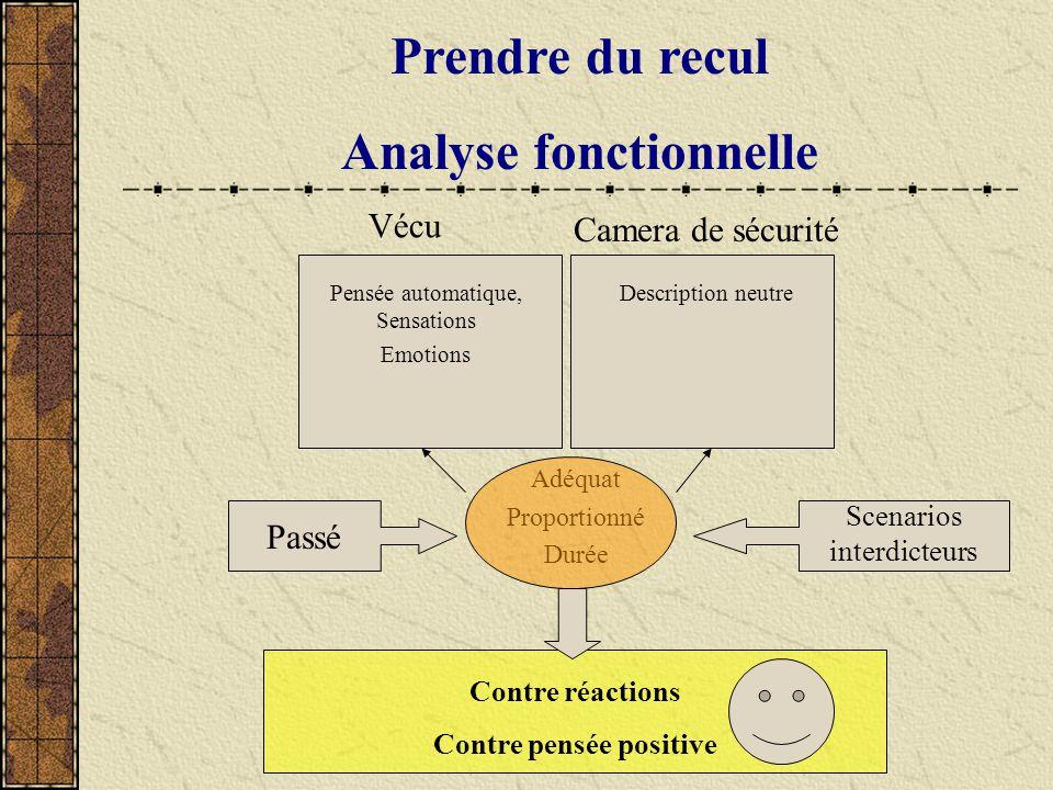 Prendre du recul Analyse fonctionnelle Adéquat Proportionné Durée Vécu Pensée automatique, Sensations Emotions Camera de sécurité Description neutre P