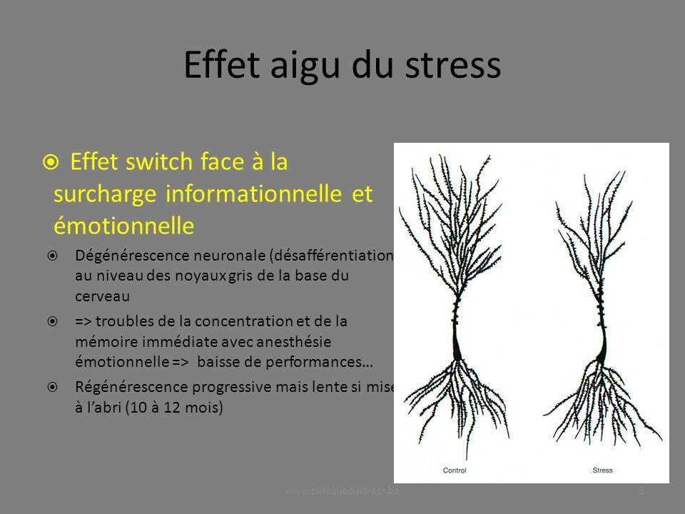 Effet aigu du stress Effet switch face à la surcharge informationnelle et émotionnelle Dégénérescence neuronale (désafférentiation) au niveau des noya