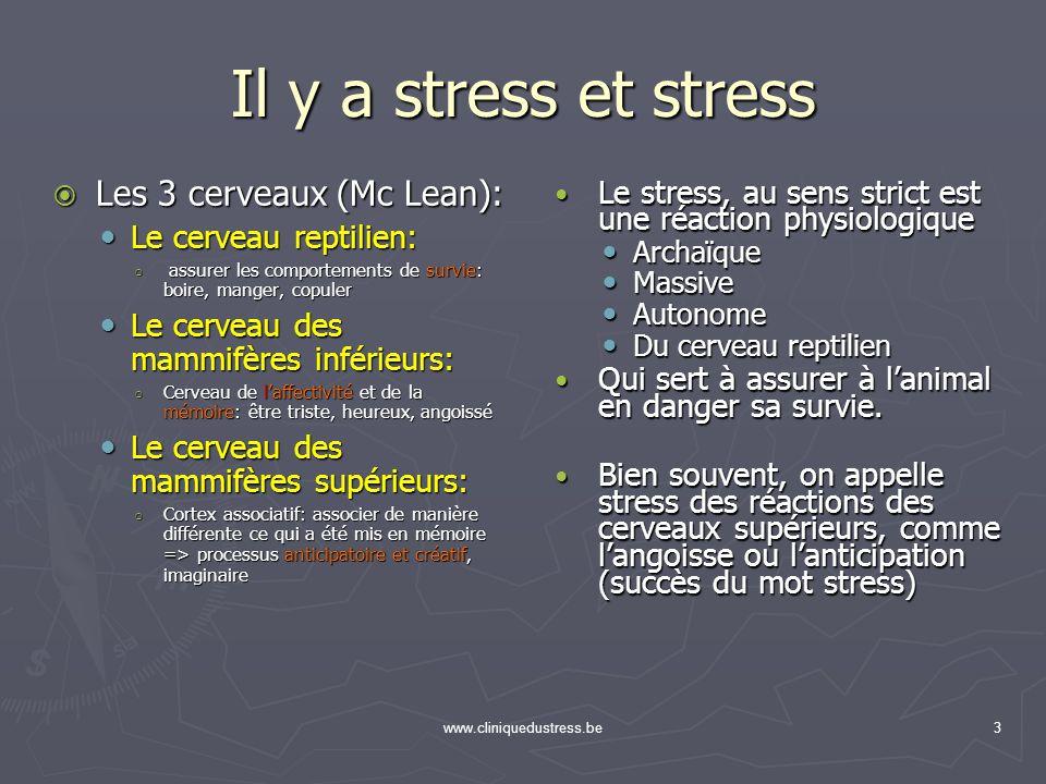 www.cliniquedustress.be3 Il y a stress et stress Le stress, au sens strict est une réaction physiologique Le stress, au sens strict est une réaction p
