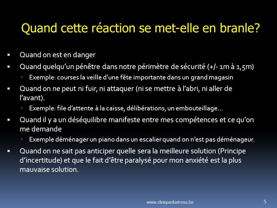 www.cliniquedustress.be 6 Que se passe-t-il lorsque lanimal a eu la vie sauve.