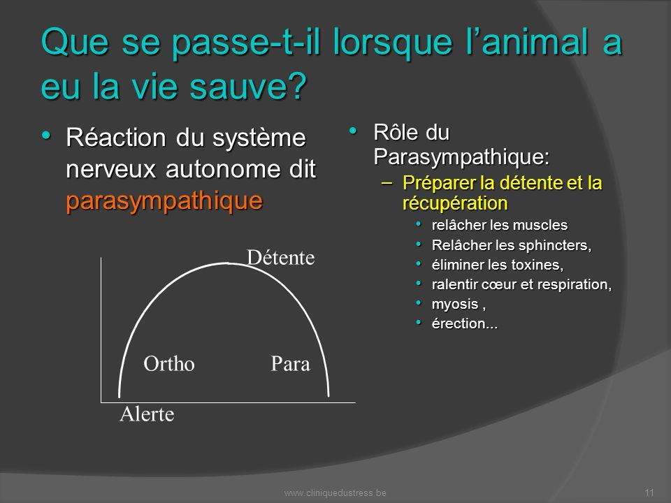 Que se passe-t-il lorsque lanimal a eu la vie sauve? Réaction du système nerveux autonome dit parasympathique Réaction du système nerveux autonome dit