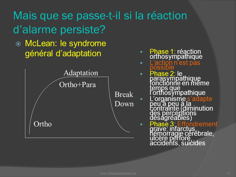 Mais que se passe-t-il si la réaction dalarme persiste? McLean: le syndrome général dadaptation Ortho Adaptation Ortho+Para Break Down Phase 1: réacti