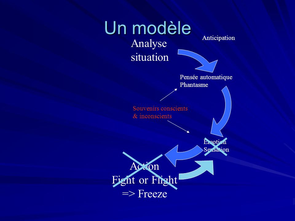 Un modèle Analyse situation Action Fight or Flight => Freeze Anticipation Pensée automatique Phantasme Emotion Sensation Souvenirs conscients & incons